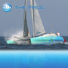 the frog racing yacht charter sail in asia
