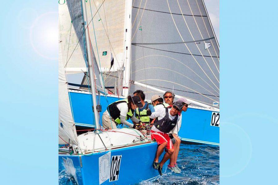Toranado platu racing sports yacht charter sail in asia