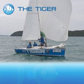 tiger-yacht-racing-asia-featured-image